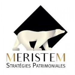 MERISTEM